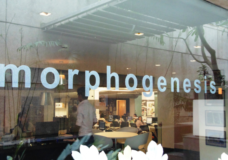 morphogenesis delhi bangalore office
