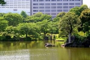 Garden in Tokyo. Koishikawa korakuen , [17]